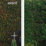 peinture-pelouse-steph-deco-artisan-peintre-orleans
